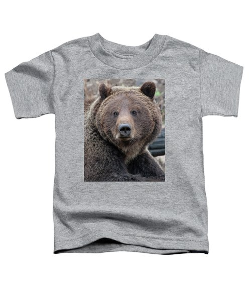 Face Of The Grizzly Toddler T-Shirt