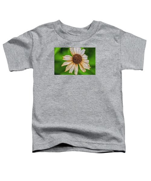 Faded Cone Flower Toddler T-Shirt