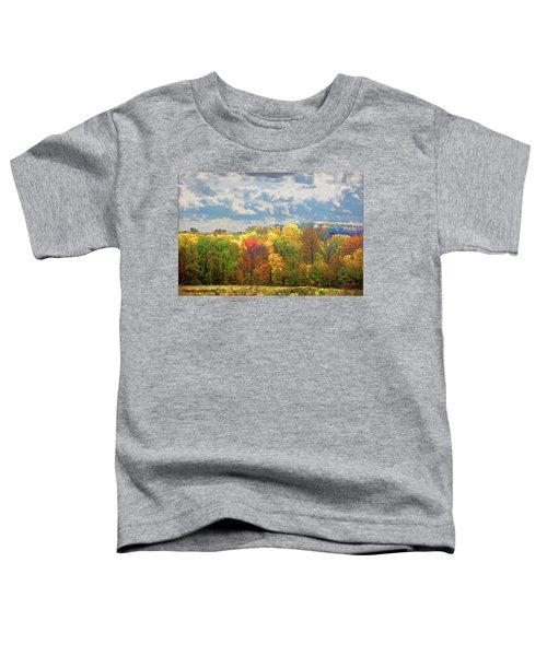 Fall At Shaw Toddler T-Shirt