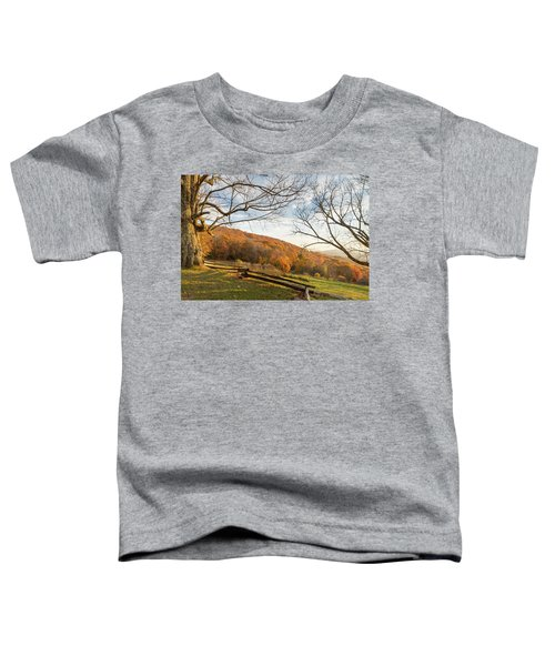 Fall Colors At The Moses Cone Estate Toddler T-Shirt