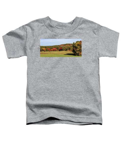 Fall Colors In Easthampton Toddler T-Shirt