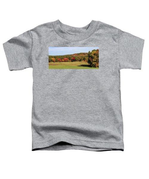 Fall Colors In Easthampton Toddler T-Shirt