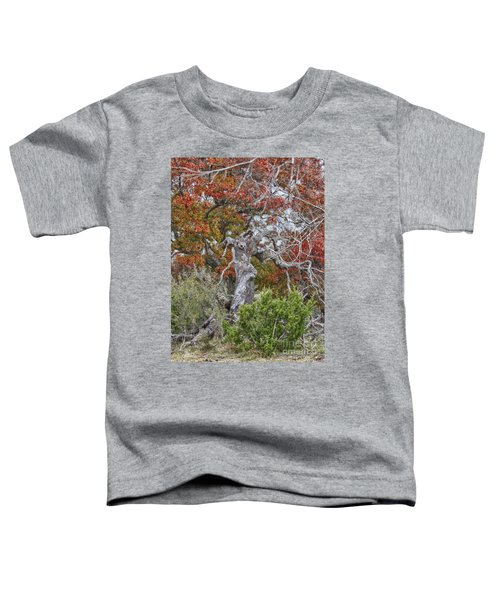 Fall Colors Once Again Toddler T-Shirt