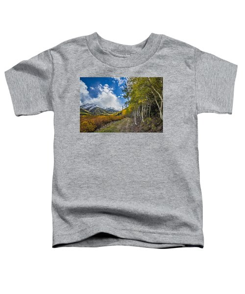 Fall In Colorado Toddler T-Shirt