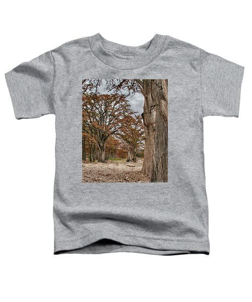 Fall In Texas  Toddler T-Shirt
