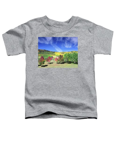 Fall On County Road 12 Toddler T-Shirt
