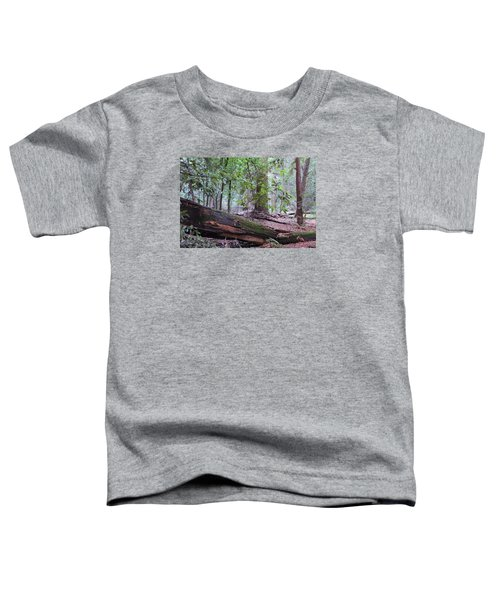 Fallen Giant Toddler T-Shirt