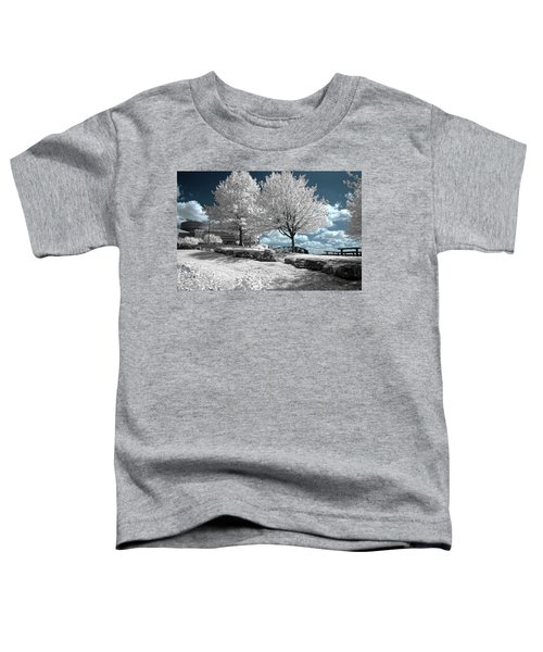 Falls Of The Ohio State Park Toddler T-Shirt