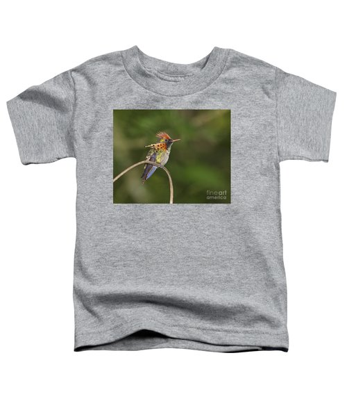 Feisty Little Fellow..  Toddler T-Shirt