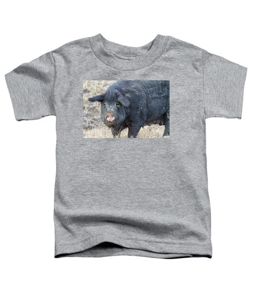 Toddler T-Shirt featuring the photograph Female Hog by James BO Insogna