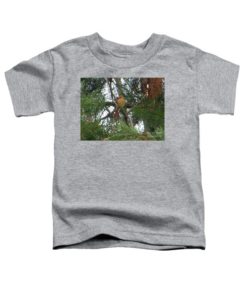 Female Northern Cardinal Toddler T-Shirt