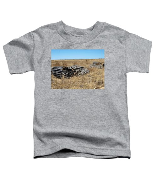 Fence Bails Toddler T-Shirt