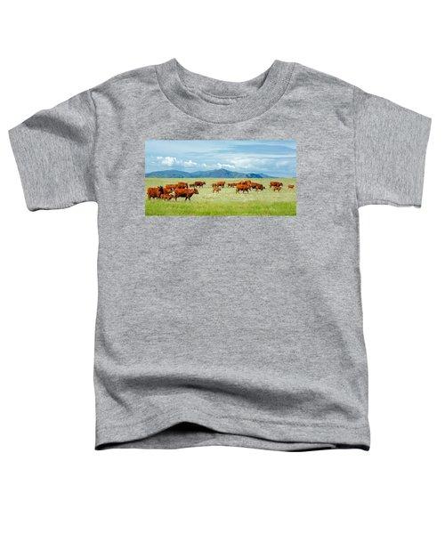 Field Of Reds Toddler T-Shirt