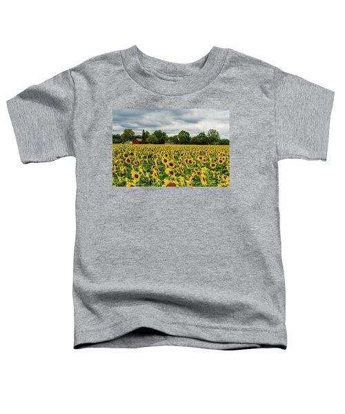 Field Of Sunshine Toddler T-Shirt