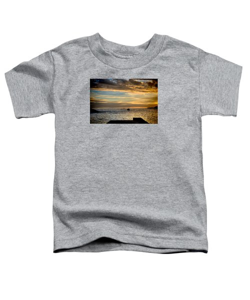 Fine Art Colour-138 Toddler T-Shirt