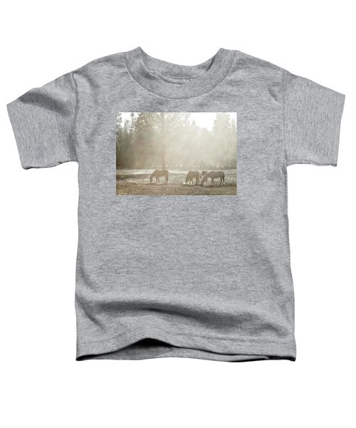 Five Horses In The Mist Toddler T-Shirt