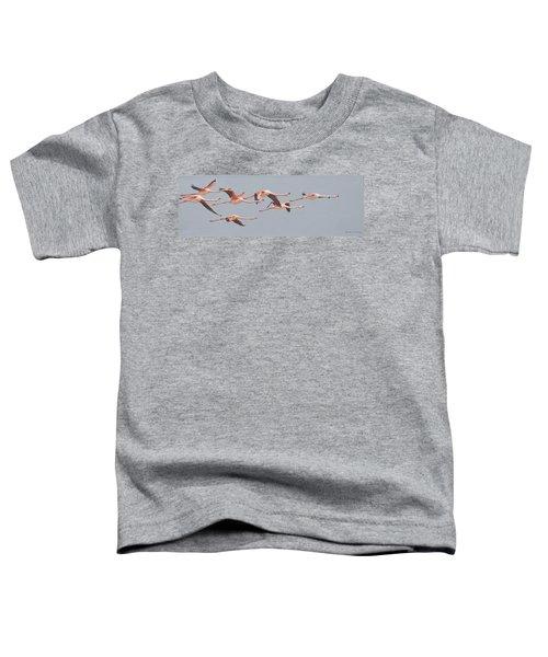 Flamingos In Flight Toddler T-Shirt