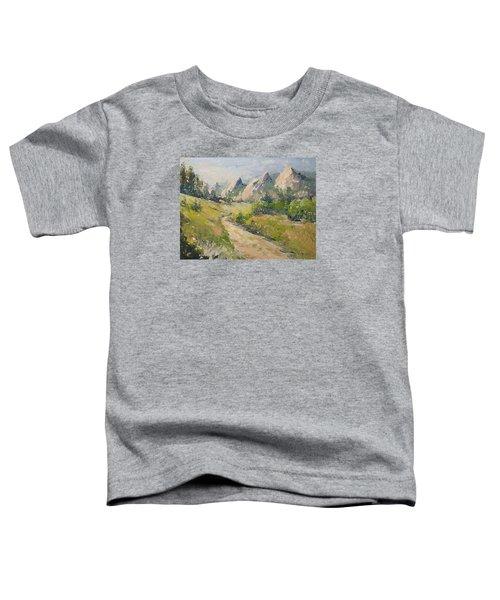 Flatirons In The Rockies Toddler T-Shirt