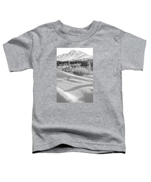 Flattop In Winter Toddler T-Shirt