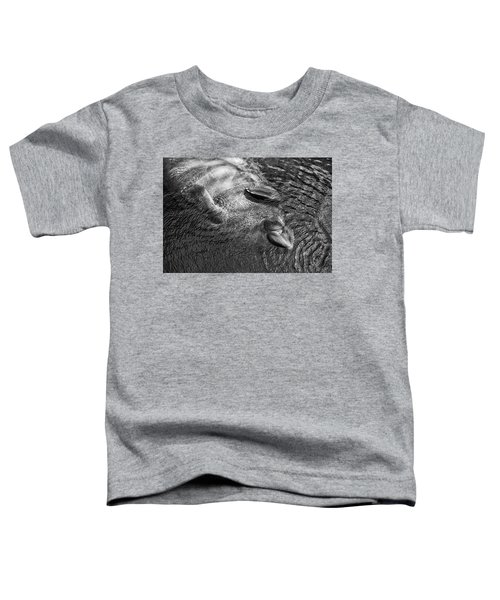 Floating Manatee Toddler T-Shirt