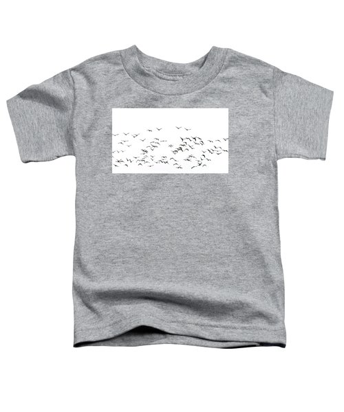 Flock Of Beautiful Migratory Lapwing Birds In Clear Winter Sky I Toddler T-Shirt by Matthew Gibson
