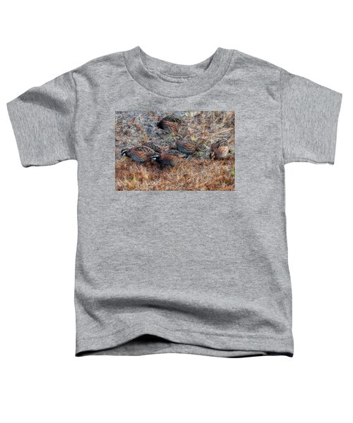 Flock Of Quail Feeding In Field Toddler T-Shirt