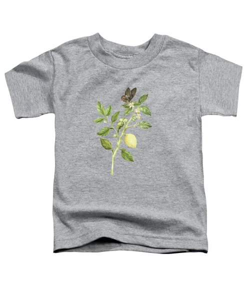 Flowering Branch Of Lemon Tree Fruit And Butterfly By Cornelis Markee 1763 Toddler T-Shirt