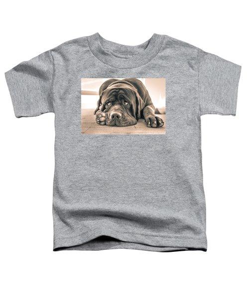 Floyd Toddler T-Shirt