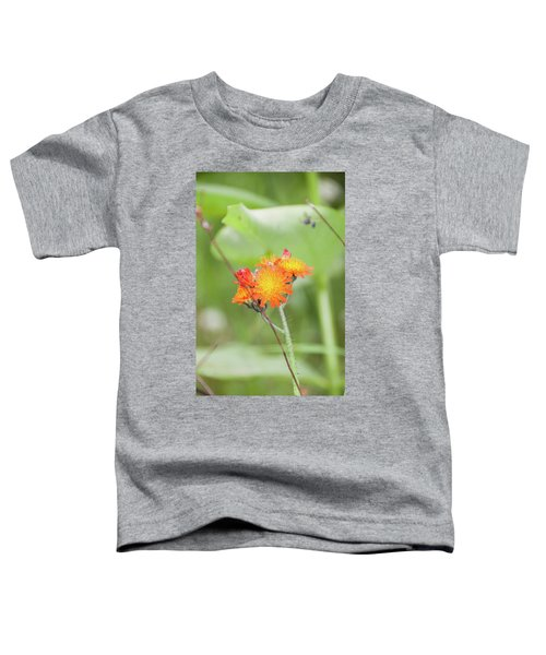 Flp-4 Toddler T-Shirt