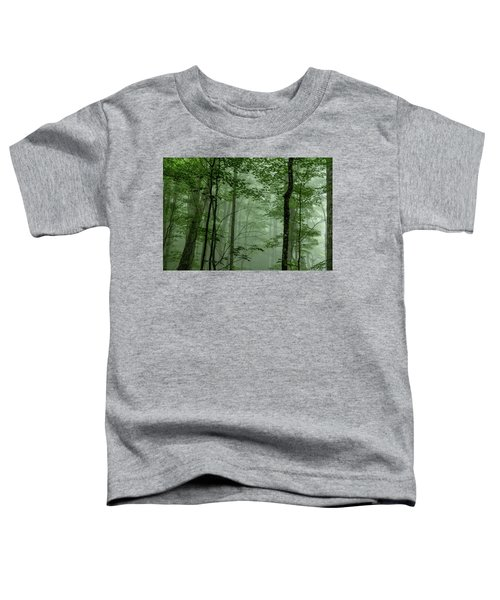 Fog In The Forest Toddler T-Shirt