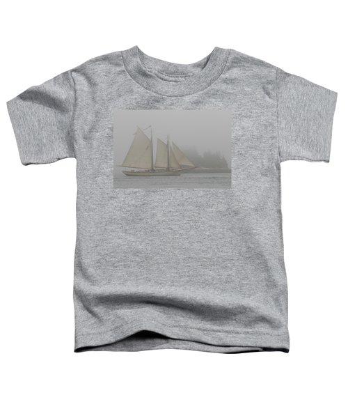 Foggy Windjammer Toddler T-Shirt