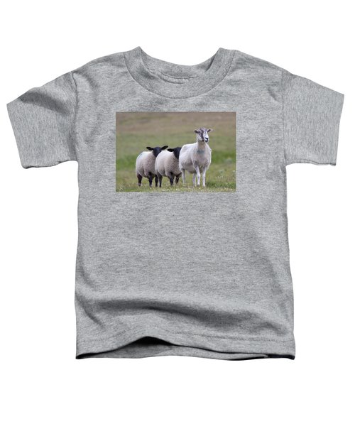 Follow The Leader Toddler T-Shirt