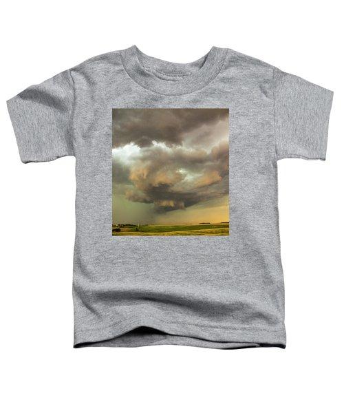 Forces Of Nebraska Nature 028 Toddler T-Shirt