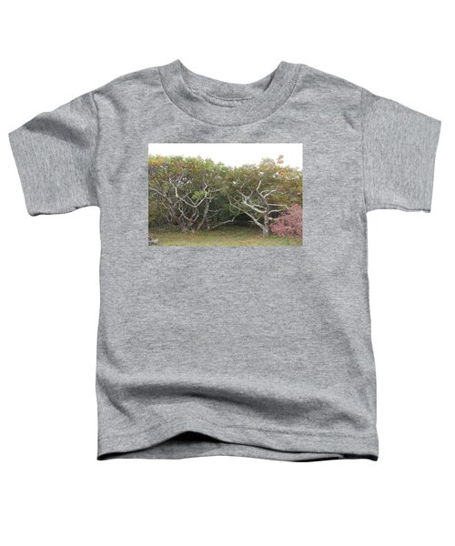 Forest Entry Toddler T-Shirt