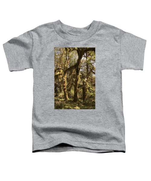 Forest Setting In Hoh Rain Forest Toddler T-Shirt