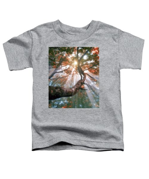 Forest With Fog And Sun Rays Toddler T-Shirt