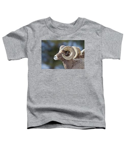 Formation Toddler T-Shirt
