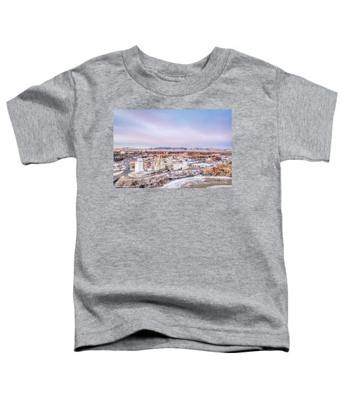 Fort Collins Aeiral Cityscape Toddler T-Shirt
