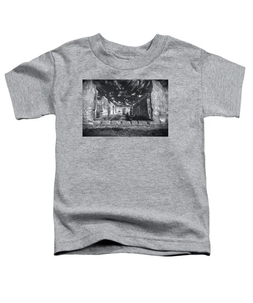 Fort Laramie Toddler T-Shirt