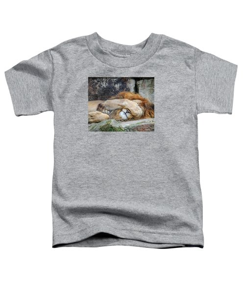 Fort Worth Zoo Sleepy Lion Toddler T-Shirt