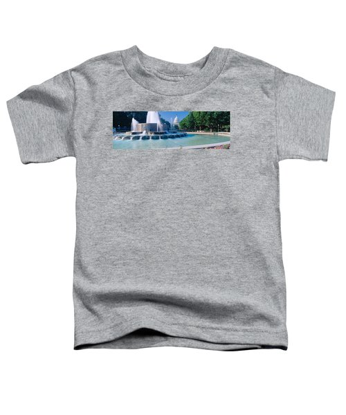 Fountain And Us Capitol Building Toddler T-Shirt