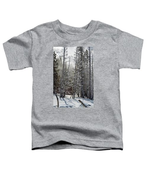 Fountain Paint Pots Shrouded In Snow And Ice Toddler T-Shirt