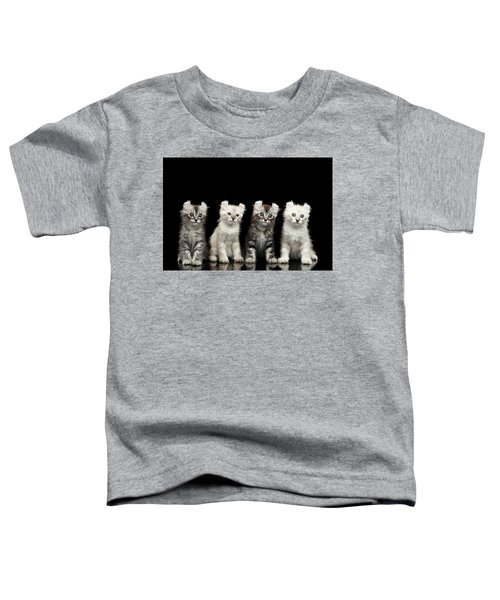 Four American Curl Kittens With Twisted Ears Isolated Black Background Toddler T-Shirt