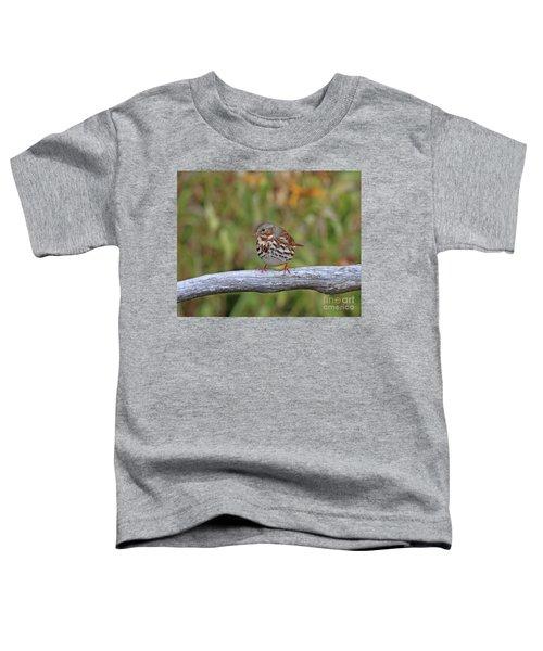 Fox Sparrow Toddler T-Shirt