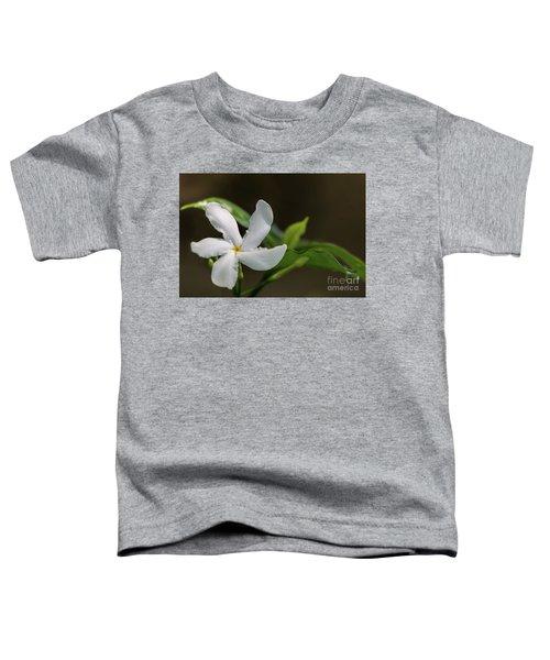 Frangipani Curves Toddler T-Shirt