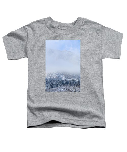 Fresh Snow In Cheyenne Mountain State Park Toddler T-Shirt