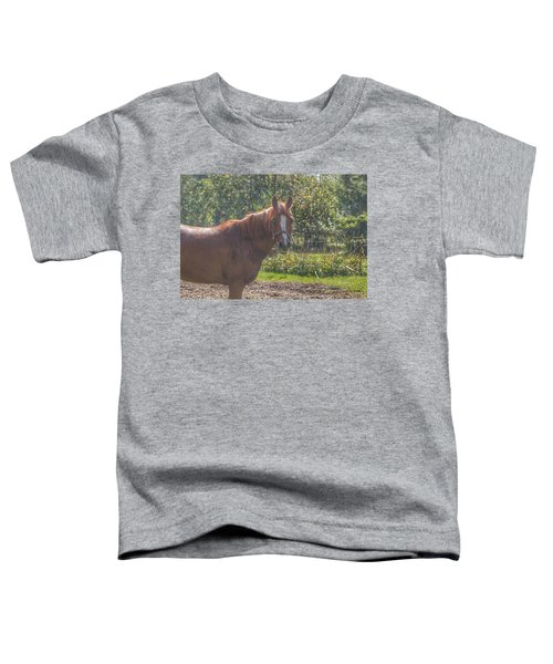 1010 - Froede Roads' Chestnut Brown Toddler T-Shirt
