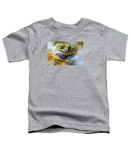 Frog In Pond Toddler T-Shirt