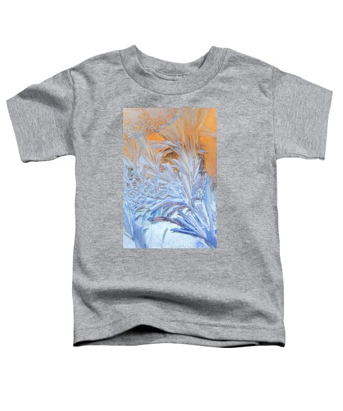 Frost Patterns On Window Toddler T-Shirt