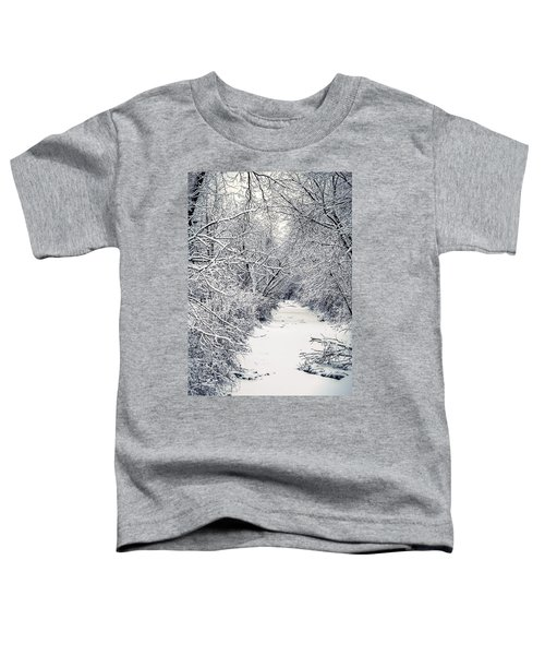 Frosted Feeder Toddler T-Shirt